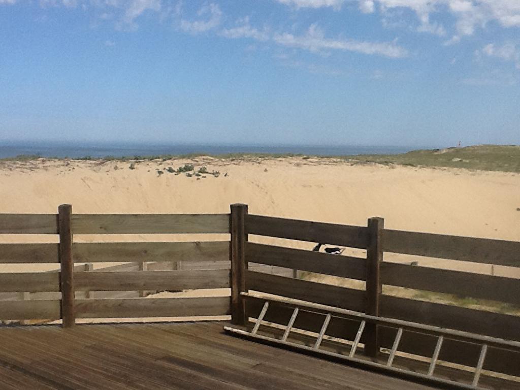 Villa vue directe océan et forêt - Seignosse